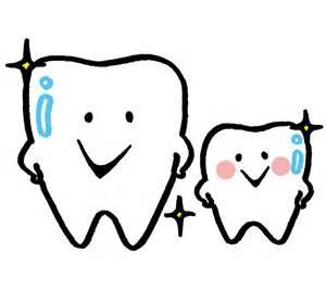 歯イラスト3
